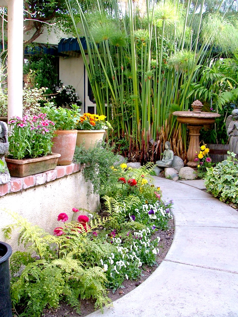 garden design with the garden cottage bed and breakfast los angeles with mistletoe plant from - Garden Design Cottage Style